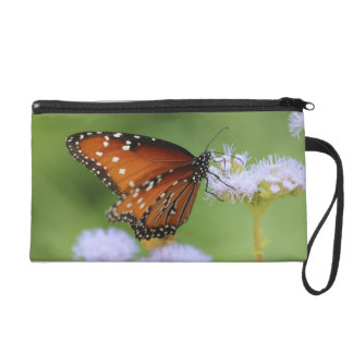 Hungry Monarch Butterfly Wristlet