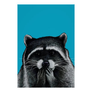 Hungry Raccoon on blue Poster