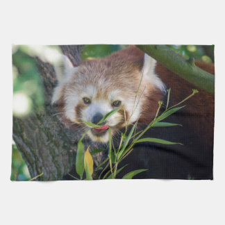 hungry Red panda Kitchen Towel
