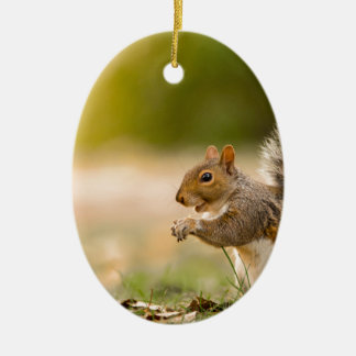 Hungry Squirrel Ceramic Ornament
