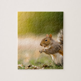 Hungry Squirrel Jigsaw Puzzle