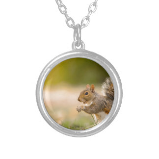 Hungry Squirrel Silver Plated Necklace