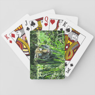 Hungry Tiger On The Prowl Poker Deck