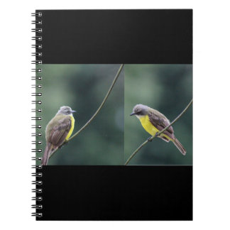 hunkered down or not bird notebooks