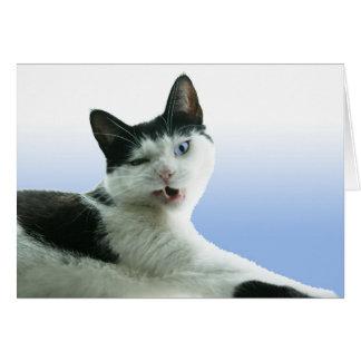 Hunter grumpy cat blank card