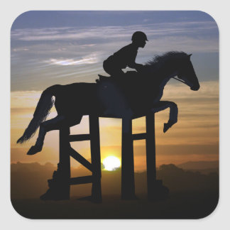 Hunter Jumper Horse and Rider Stickers