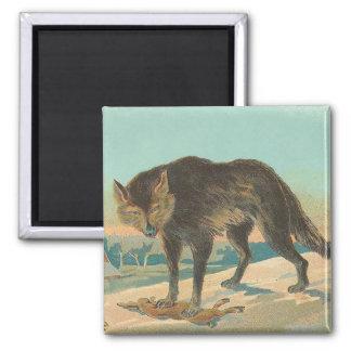 Hunter Wolf Square Magnet