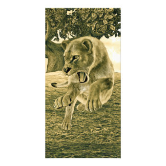 Hunting Lioness Photo Card Template