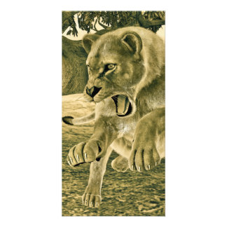 Hunting Lioness Picture Card
