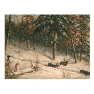 Hunting Moose Postcard