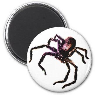 Huntsman Spider Magnet