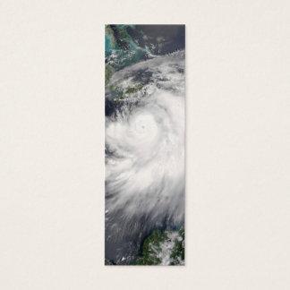 Hurricane Dennis Mini Business Card