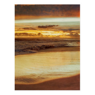 Hurricane Hermine Sunset Postcard