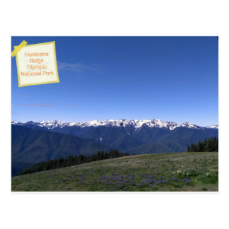 Hurricane Ridge in Olympic National Park postcard