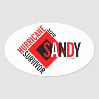 Hurricane Sandy Survivor Sticker 6
