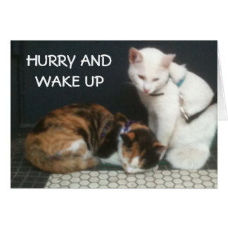HURRY AND WAKE UP=THANKSGIVING CARD