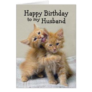 Husband Happy Birthday Orange Kittens Card