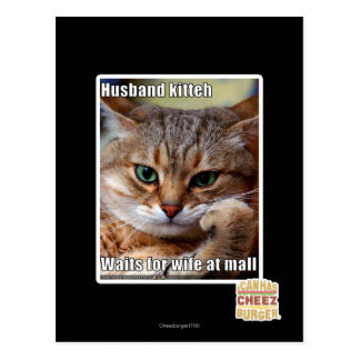 Husband Kitteh Postcard