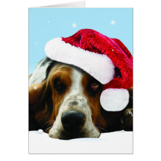 Hush puppy with santa hat card