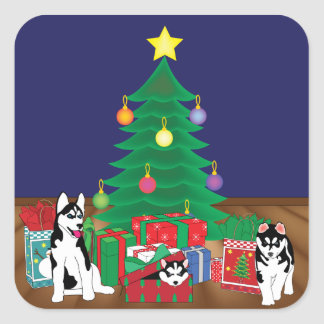 Huskies Playing Underneath the Christmas Tree Card Square Sticker