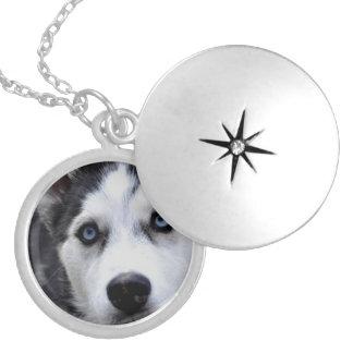 husky-54 round locket necklace