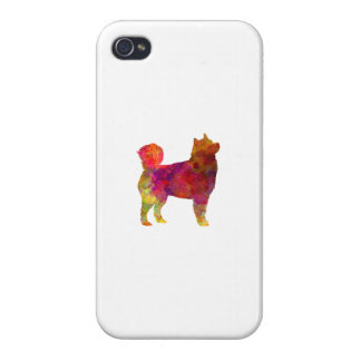 Husky Alaskan in watercolor Covers For iPhone 4