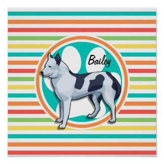 Husky Bright Rainbow Stripes Posters