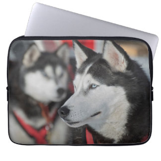 Husky dog before a race, Canada Laptop Sleeve