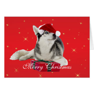 Husky dog in santa hat custom Christmas Card