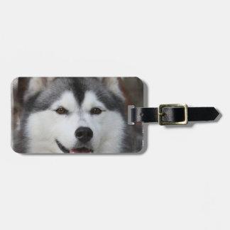 Husky Dog  Luggage Tag