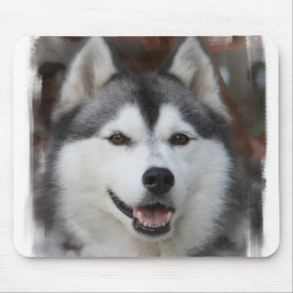 Husky Dog Mouse Pad