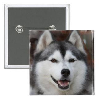 Husky Dog Square Button