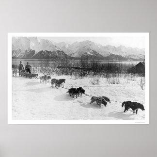Husky Dog Team Alaska 1918 Poster