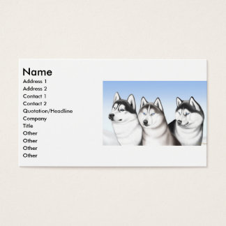 Husky Dogs Profile Card