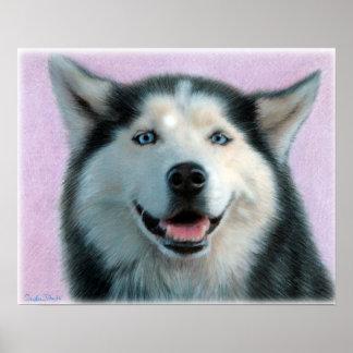 Husky Drawing Poster