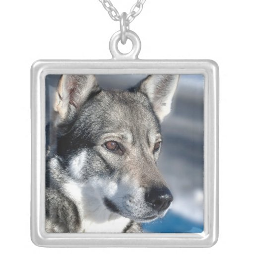 Husky in Snow Sterling Silver Necklace