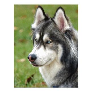Husky Letterhead