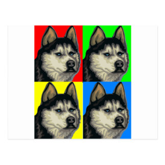 Husky Malamute Goes Primary Collage Postcard