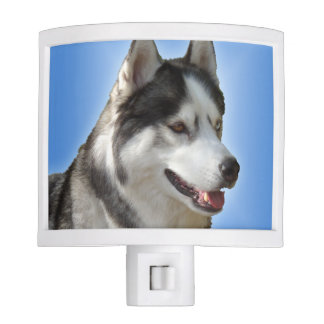 Husky Nightlight Siberian Husky Dog Night Light