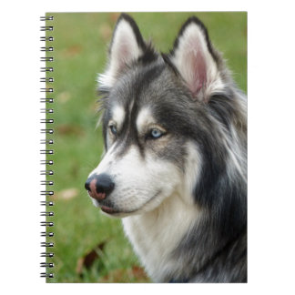 Husky Notebook