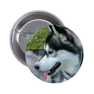 Husky Profile  Button