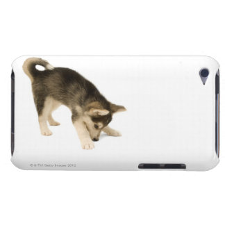 Husky Puppy 2 Barely There iPod Case