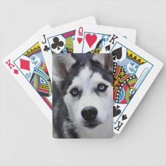 Husky Puppy Deck of Cards