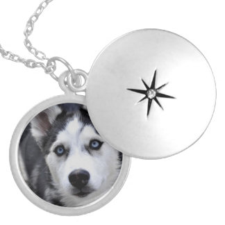 Husky Puppy Locket