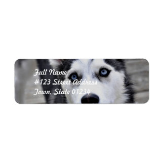 Husky Puppy Mailing Labels