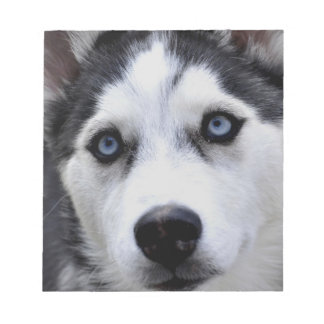 Husky Puppy Notepad