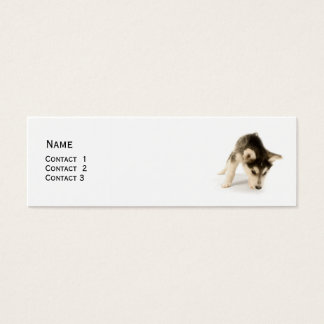 Husky Puppy Profile Card