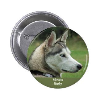 Husky Siberian dog beautiful photo button, pin