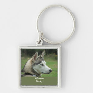 Husky Siberian dog beautiful photo keychain, gift Keychain