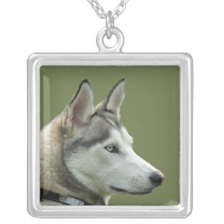 Husky Siberian dog beautiful photo necklace, gift Square Pendant Necklace